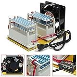 dastrues AC 220V 20g Ozone Generador Comercial Generador de Ozono purificador de aire Desinfectante eléctrica + Fan