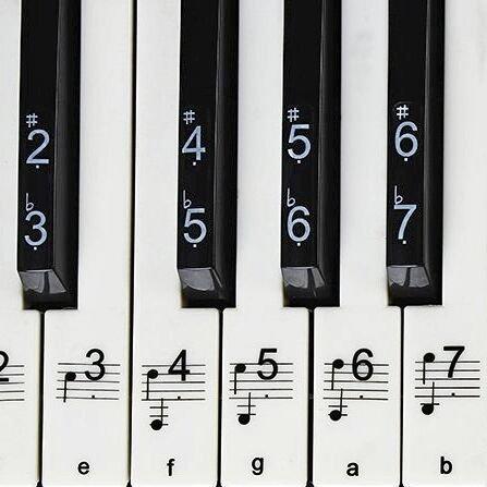 Klavier Aufkleber, 49,61,76,88 Key voller Satz von Piano & Keyboard Musik Hinweis Aufkleber, transparente Kunststoff-Aufkleber für weiße und schwarze Tasten + leere Aufkleber & Benutzerhandbuch
