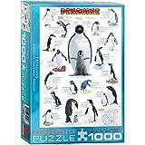 EuroGraphics Pinguine - 1000 Teile Puzzle