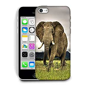 Snoogg Baby Elephant Following Printed Protective Phone Back Case Cover For Apple Iphone 5C
