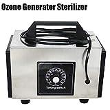 GXLO Generatore dell'ozono sterilizzatore, con Timing Interruttore purificatore, Purificatore d'Aria, Ozonizzatore Profumo Macchina, Ozon O3 Generator Ozonizer