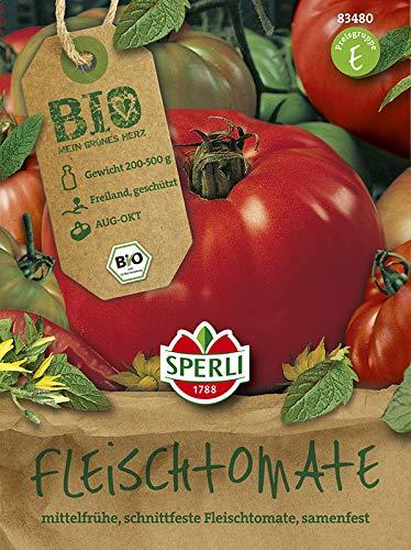BIO Tomate Marmande Fleischtomate