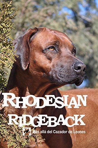 Rhodesian Ridgeback. Más alla del cazador de leones.