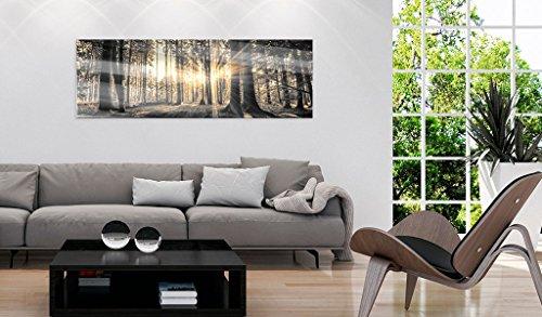 Neuheit! Modernes Acrylglasbild 135x45 cm - 1 Teile - 2 Formate zur Auswahl – Glasbilder – TOP - Wand Bild - Kunstdruck - Wandbild – Bilder - Wald Baum Natur Landschaft c-B-0077-k-c 135x45 cm - 4