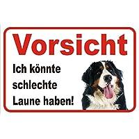 steelprint.de Schl/üsselbrett//Hakenleiste Schl/üsselboard 6 Haken Appenzeller Sennenhund *