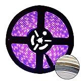 UV Luce Nera Striscia LED, Eleganted Flessibile 16.4Ft/5M 2835 SMD 300LEDs Impermeabile Strisce di Luce LED Lampada IP65 a 60 Watts con Alimentatore DC12V 3A