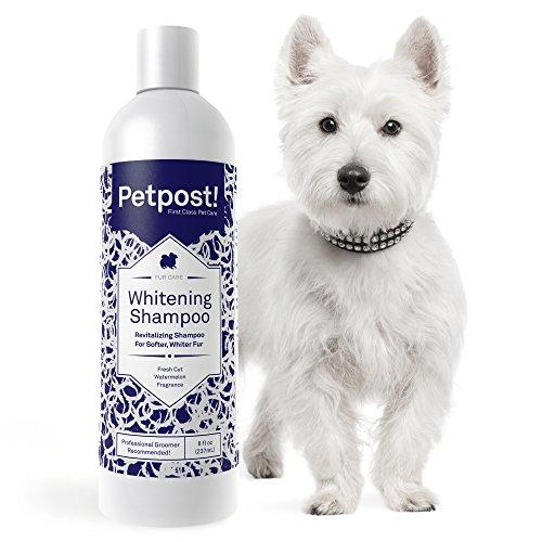 Petpost | Shampoo Blanqueador Perros - El Mejor Tratamiento