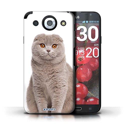 Kobalt® Imprimé Etui / Coque pour LG Optimus G Pro / Abyssinien conception / Série Espèces de chats Scottish Fold