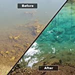 HYDRA Pond Sludge Remover SILT-LESS ALL-IN-ONE 5KG Prevents Blanket weed, Algae, Cloudy Water, Slime and Bad Odour 7