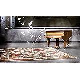 Alfombra Moderno – alfombra diseño – Alfombra diseño mariposas colección Sitap Venus 91 x -Metallic