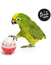 The Pets Company Bird Interactive Bell Ball, Bird Toy for Parakeet, Cockatiel, Budgerigar, Parrots, Set of 2, 1.5 Inches