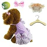 Newtensina Elegante Mascotas Chica Vestidos de Cachorro Vestido de Tutu Femenino lindo perrito Juego de Collar de Vestir para Perro - Incluye un collar lindo y un pinzas de pelo rosa y una percha
