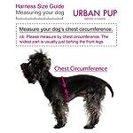 "UrbanPup Jet Black Soft Harness (X-Small - Dog Chest Circumference: 10"" / 25cm) 15"