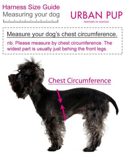 "UrbanPup Jet Black Soft Harness (X-Small - Dog Chest Circumference: 10"" / 25cm) 7"