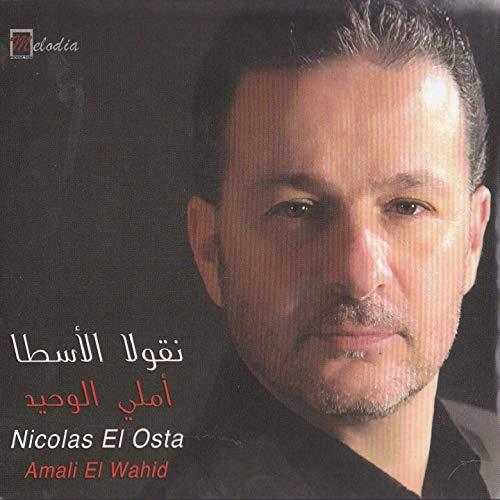 Amali El Wahid