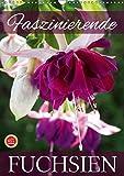 Faszinierende Fuchsien (Wandkalender 2019 DIN A3 hoch): Faszinierende Fuchsien im Portrait (Monatskalender, 14 Seiten ) (CALVENDO Natur)