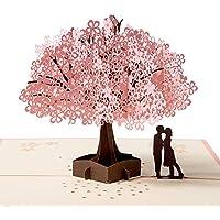 Biglietto d'auguri Carta 3D Compleanno Romantico, Pop up Carta Anniversario, San Valentino
