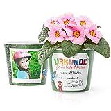 Urkunde Grundschule Blumentopf (ø16cm) | Abschied Geschenk für die beste Lehrerin mit Rahmen für zwei Fotos (10x15cm)