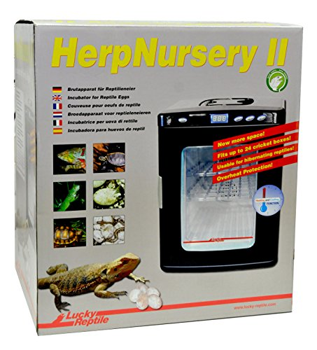 lucky-reptile-hn-2-herp-nursery-ii-inkubator-reptilien-brutapparat