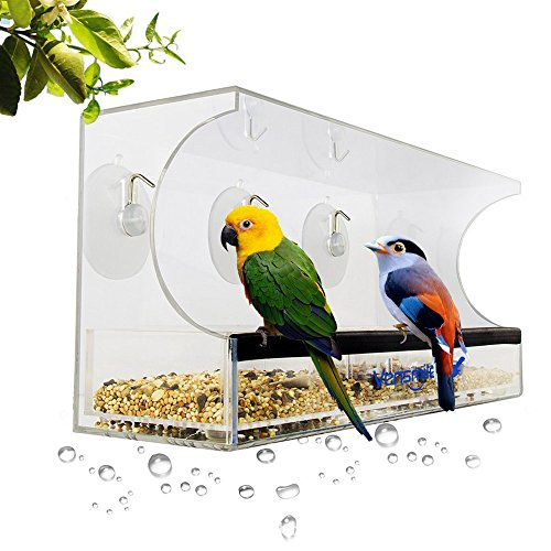 ZOE Kreative Haustier-Vogel-Zufuhr-Fenster-Transparente Anti-Eichhörnchen-Vogel-Zufuhr-Fenster-Vogel-Zufuhren
