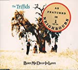 The Triffids Rock