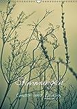 STIMMUNGEN - Gräser und Zweige (Wandkalender 2019 DIN A3 hoch): Stimmungsvolle Bilder von Gräsern und Zweigen in sanften Farben (Monatskalender, 14 Seiten ) (CALVENDO Natur)