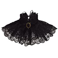 BLESSUME Vintage Lolita Neck Collar Gothic Punk Neck Ruff Lace Ribbon Charm Cosplay Props, Black, One Size