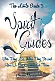 The Little Guide to Spirit Guides: Who They Are, What They Do and How We Can Connect with Them