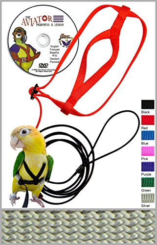 Asocea Adjustable Feather Tether Bird Harness And Leash For Small To