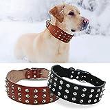 Wishdeal Hundehalsband aus Echtleder, für kleine und mittelgroße Hunde, Schwarz/Braun