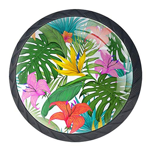 Infusion und bunte 01 Einfach zu installieren Stilvolle Möbel Schublade Knöpfe Möbelknöpfe Praktische Kristallglas Möbelgriff zu Hause und im Büro 4 Stück zu dekorieren 3.5x2.8cm -