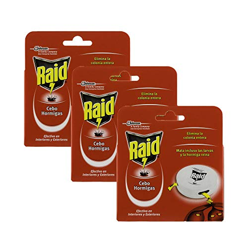 Raid Cebo Antihormigas - Insecticida Cebo Hormigas Interior y Exterior - Pack de 3