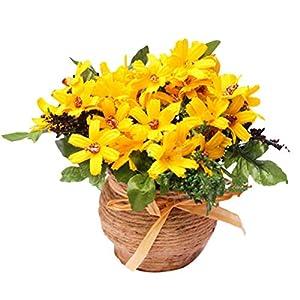 Vosarea Flores de Crisantemo Artificial de Plástico Falsos Girasoles Flor Artificial para Interior Al Aire Libre…