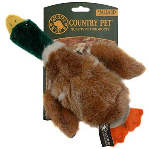 hundeinfo24.de Country Pets CP281043 Hundespielzeug Wildente, Plüsch mit Quietschie, Groß