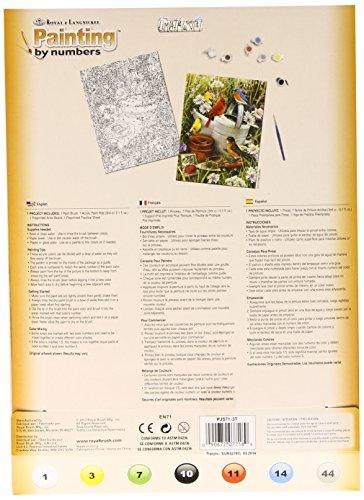 Royal & Langnickel PJS71 Malen nach Zahlen – Gartenvögel - 2