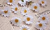 Kunstgerbera, Kunstmargeriten, 100Stück, Seideblumen-Köpfe, zum Basteln, für Hochzeitspartys, von Ricisung, weiß