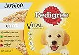 Pedigree Vital Protection Welpenfutter / Hochwertiges Hundefutter mit 4 Sorten Fleisch in Gelee (12 x 100g)