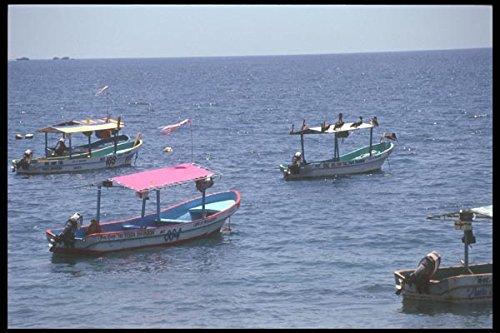 064079-tourist-boats-puerto-escondido-a4-photo-poster-print-10x8