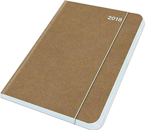 Buchkalender Eis 2018 - Midi Flexi Diary ColourLine ICE, Taschenkalender - 12 x 17 cm