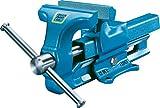 HEUER Parallel-Schraubstock 120 mm feste Backen blau