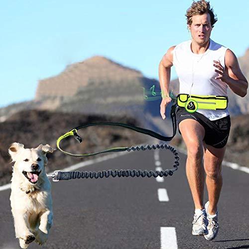 FidgetGear Hundeleine mit Zubehörtasche, für Spazierg… | 06954250808272