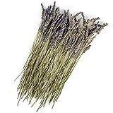 Original Italienischer Bio Lavendel an Zweigen aus Sizilien Lavendelzweige getrocknet 25g (ideal auch für Präsentkörbe)