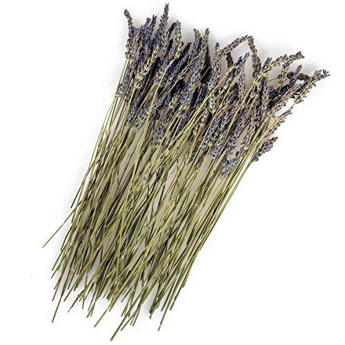 Original Italienischer Bio Lavendel an Zweigen aus Sizilien Lavendelzweige getrocknet 25g (ideal...
