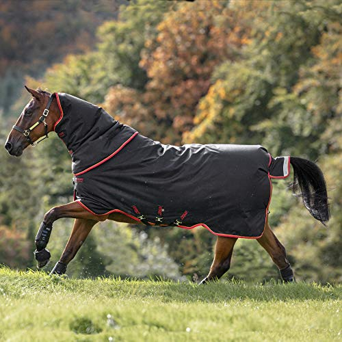 Horseware Amigo Bravo 12 Plus Turnout Heavy 400g - Black & Red/Gold