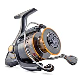 Shakespeare Bass Rod And Reels - Best Reviews Guide
