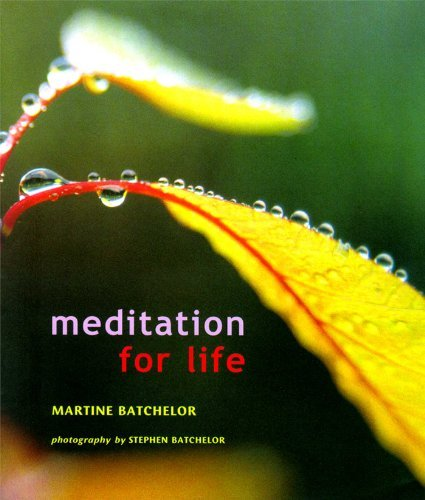 Meditation for Life: Written by Stephen Batchelor, 2001 Edition, Publisher: Wisdom Publications,U.S. [Paperback]
