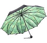 Damen Winddicht Golfschirm Double Layer Regenschirm Mode Sonnenschirm Brautschirm Hochzeitsschirm (Schwarz)