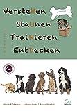 Buch-Cover VersteHen,StaUnen,TraiNieren,EntDecken: Band 3