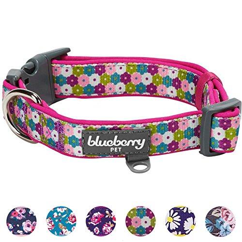 Blueberry Pet 2,5cm L Groβ Blumendruck Designer Neopren Gepolstertes Hundehalsband für Mittelgroße Hunde -