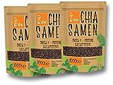 Billigen Chia Samen kaufen: 3 x 1 kg Chia Samen vom Hersteller ChiaDE online kaufen!